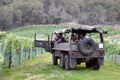 Six Sigma Ranch & Winery Six Sigma vineyard tour in the Pinzgauer